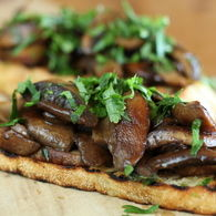 Approved_-_mushroom_and_verjuice_bruschetta_recipes_thumbnail