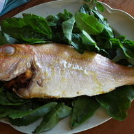 Snapper_sorrel_pancetta_14_recipes_thumbnail